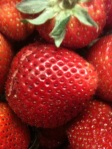 Photo of California strawberries