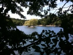 Island in Jamaica Pond